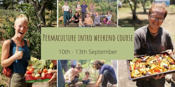 permaculture intro weekend course